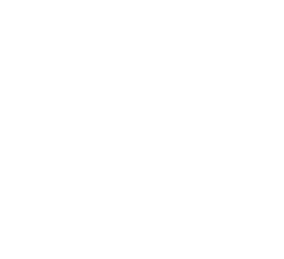 Penetration Testing - Service Icon